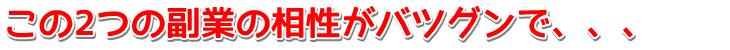 kazari_aisho